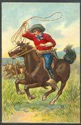 HM148 CHEVAL HORSE CAVALIER COW BOY LASSO VACHES FANTAISIE Gaufrée RELIEF  | En vente sur Delcampe