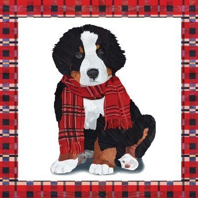 Hond met shawll, kerstservet