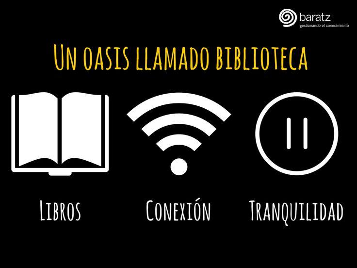 Un oasis llamado biblioteca: libros, conexión y tranquilidad