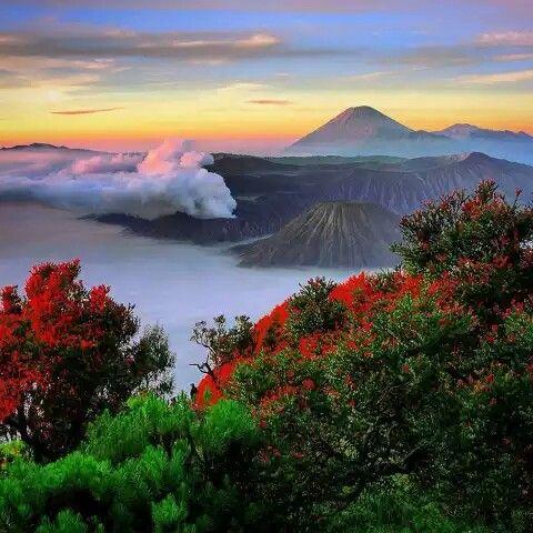 Mahameru (Semeru montain) Lumajang - Jawa Timur ( East Java ) Indonesia  #copas