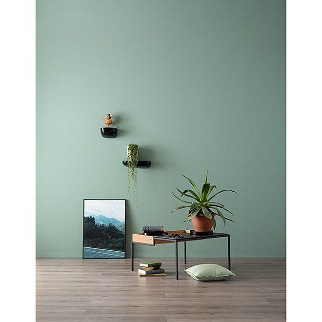 Schöner Wohnen Wandfarbe Designfarbe In 2020