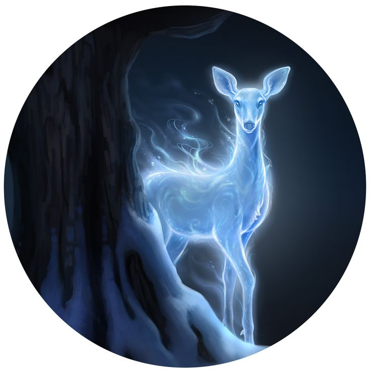 Harry Potter Wallpaper Cute I Took The Patronus Quiz From J K Rowling Want To