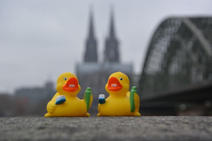 IDS - International Dental Show in Cologne