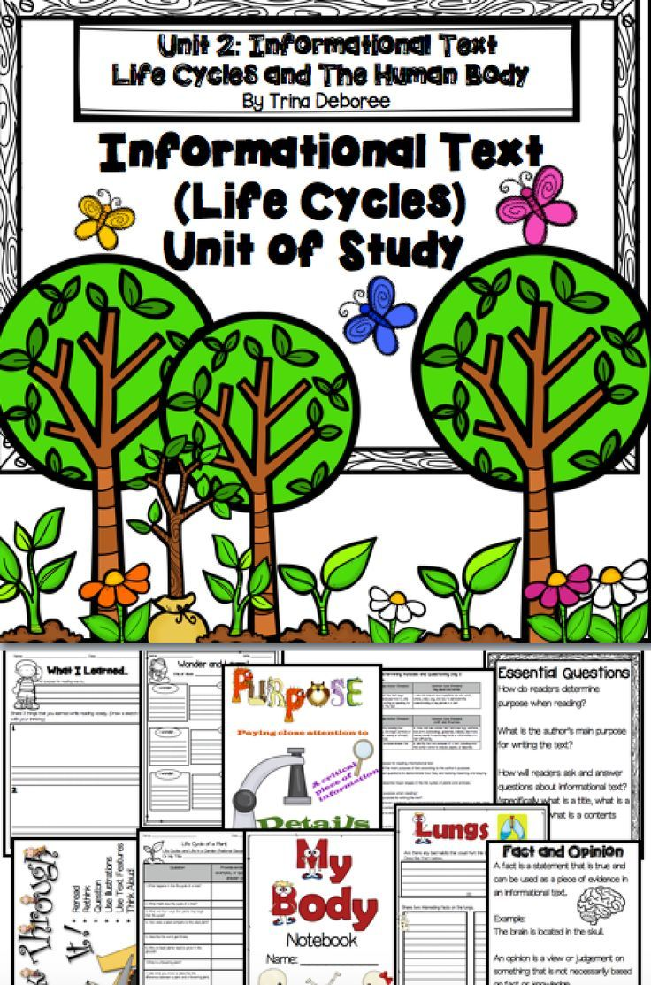 Nonfiction Unit of Study {Focus on Life Cycles} Life