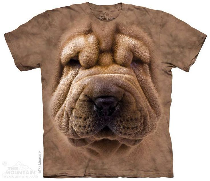 Big Face Shar Pei Puppy T-Shirt Order now: http://prikid.eu/big-face-shar-pei-puppy-t-shirt/ Shipping worldwide! If you want to buy a few items, we have discount program for you: http://prikid.eu/discount-program/ #Shar Pei #sharpei #Tshirt #bigface #PRIKID #3D #puppy #dog #dogs #like #little #look #love