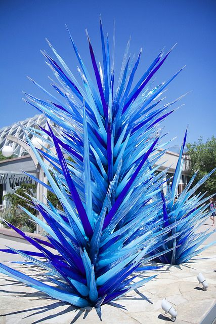 #Chihuly #Denver At the Denver Botanic Gardens