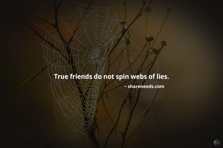 True friends do not spin webs of lies.  #friendshipquotes