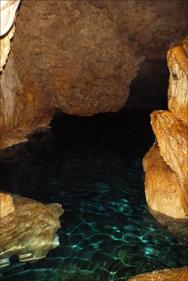 La grotte de Lifou  Instagram: @CruiseLife_au Facebook: CruiseLifeAustralia  #MyCruiseLife #CruiseLifeAustralia #CruiseLifeReviews #PortsOfCall #ShoreTours #Cruise