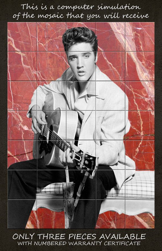 Elvis Presley tile mural ready to hang wall art by TerryTiles2014
