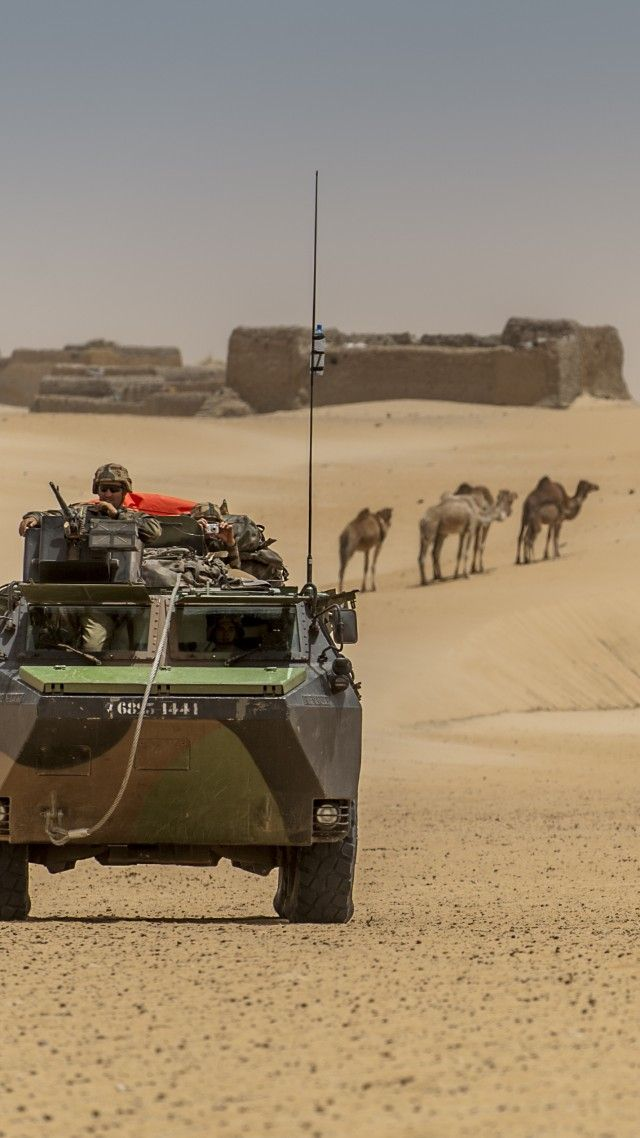 Operation Serval, Mali, French Armed Forces