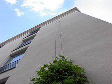 Stahlseil für Pflanzen - Tipps zu Auswahl und Planung