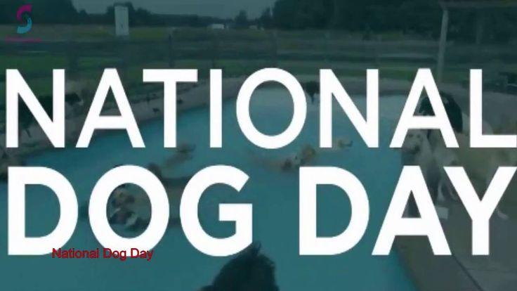 ►►Happy National Dog Day ►► Happy National Dog Day 2016►►