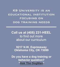 Dog Training Norman Ok