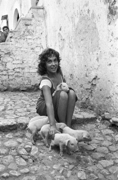 Italian Vintage#photographs ~ gina lollobrigida