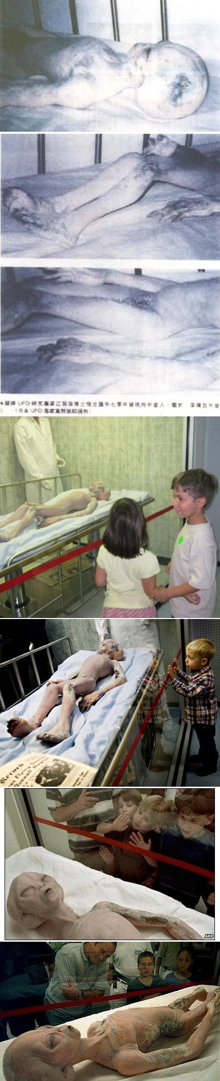 """""""The following alien photos were distributed around the internet after release in 1995 from China. The Chinese translation stated: """"Based upon a source from the Japanese UFO Institute, the picture or photograph shows the 1970 alien incident."""" The photos of the alien were believed to be taken or the alien body found in Gongzui on Dadu River (southwest of Leshan, China)."""" OR it's the prop found in the 'International UFO Museum Research Center in Roswell', New Mexico."""
