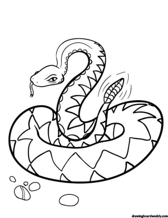 Rattlesnake Coloring Page Snake Coloring Pages Coloring Pages Free Coloring Pages