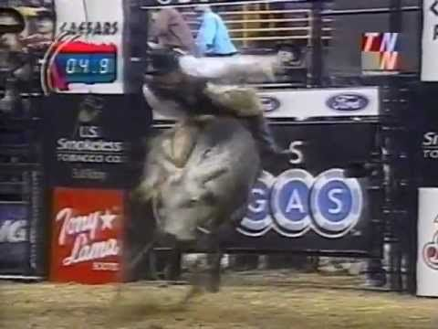Ty Murray vs Blueberry Wine - 01 PBR St. Louis (93.5 pts) ... pretty lil bull! <3