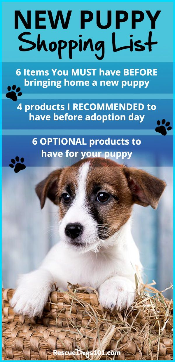 New Puppy Shopping List Dogs Puppies New Puppy Puppy Supplies