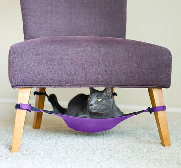 "A cat ""hammock"" -- I need to do this for my kitties... maybe under the coffee table?!"