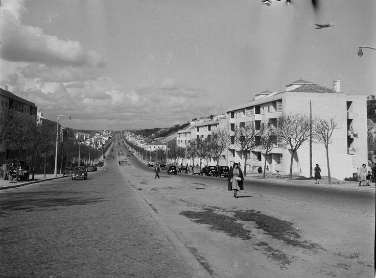 Era assim em 1952. Avenida Almirante Gago Coutinho, panorâmica Arquivo Municipal de Lisboa #lisboa