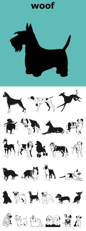 Woof! A font full of the best-loved dogs plus one mutt. Distinct lines convey the character and heart of each breed.