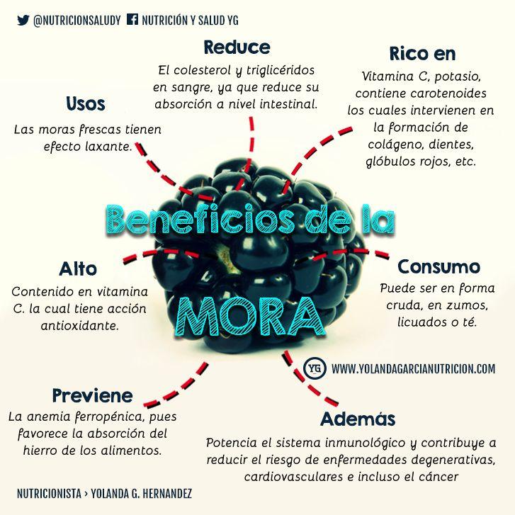 Beneficios de la #mora, conoce las propiedades de la mora