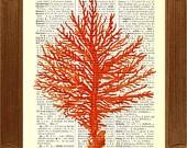 coral coral coral: Art Decor, Coral Trees, Books Art, Coral Coral Etsy, Art Prints, Coral Prints, Coral Sportsgirl, Coral Reefs, Coral Accent