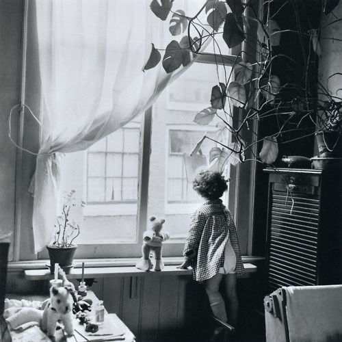 Jordaan, Amsterdam, 1955