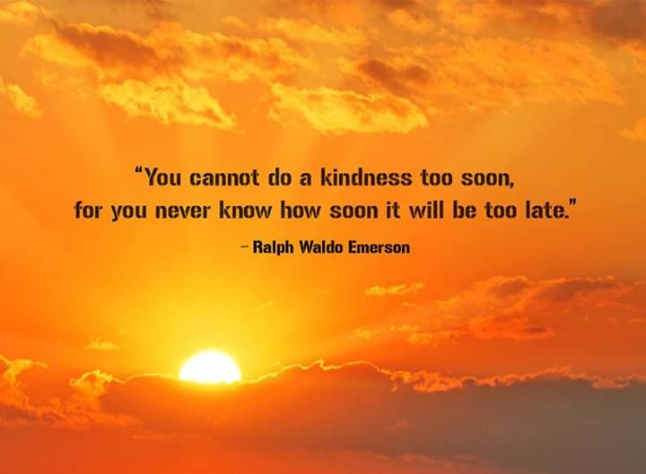 Kindness favorite quotes and sayings pinterest