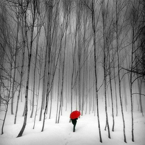 Red Umbrella Picture Perfect Pinterest White Photography