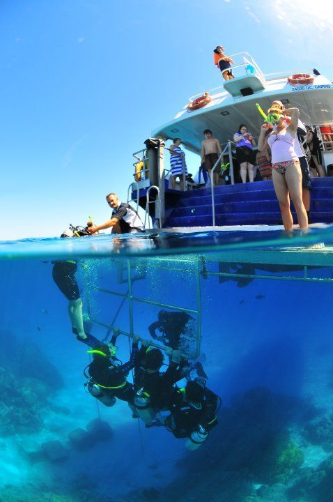Down Under Dive - Padi Open Water Dive Course from $520 Visit http://www.fnqapartments.com/tour-down-under-dive-padi-open-water-dive-course/area-cairns/  #cairnstourpackages