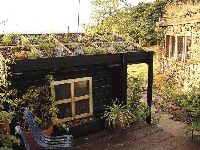Det grønne tag kan lægges på hele huset eller som her på udhuset..