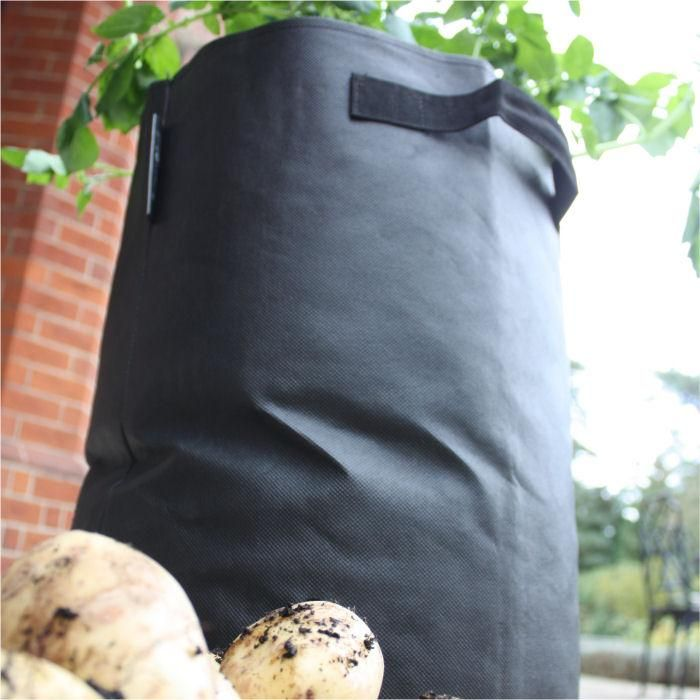 Potato Planting Bags   Fill Each Planter With 48 Litres Of Compost And  Plant Up With