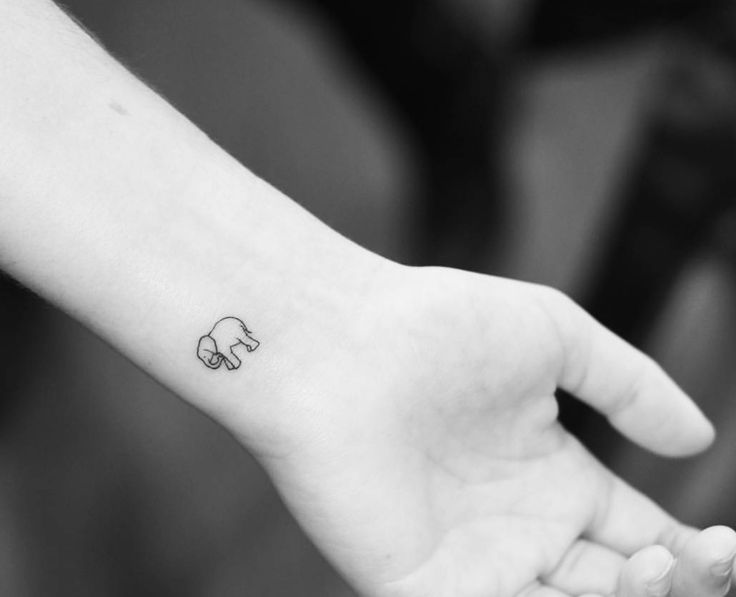 Dainty elephant tattoo