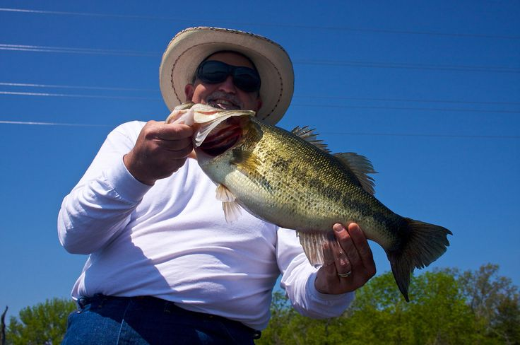 Best lakes for bass fishing in texas for Best bass fishing lakes
