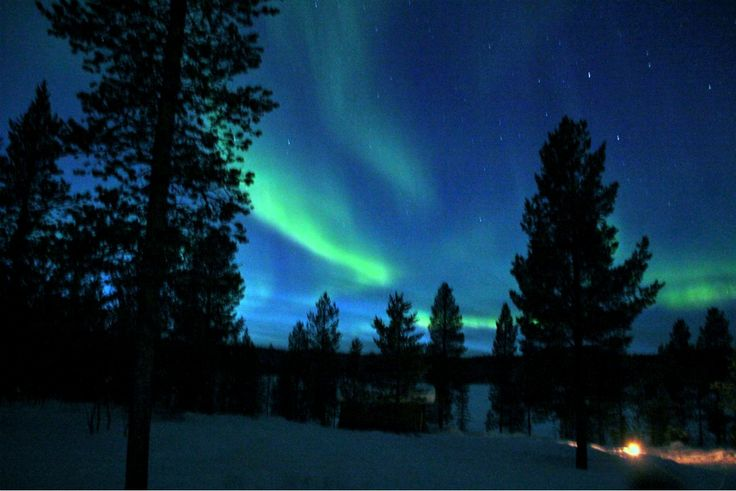 Aurora Boreale - Northern Lights (Francesca Robiony, Kiruna)