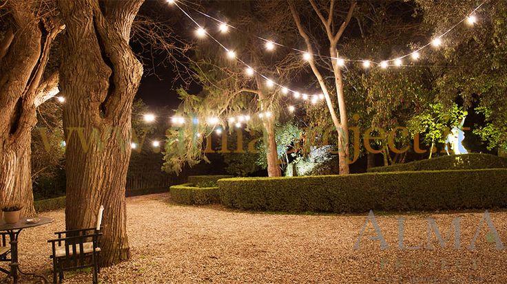 150318 - ALMA PROJECT @ Borgo Stomennano - Giardino Botanico - Bulbs lighting test 4