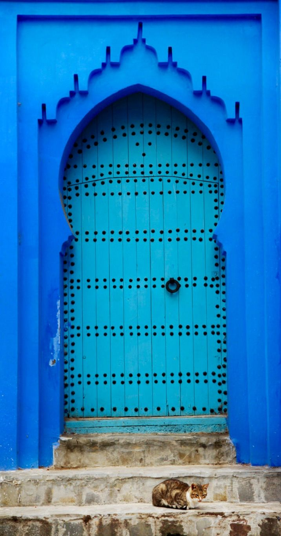 Door | ドア | Porte | Porta | Puerta | дверь | Sertã Chefchaouen, Marruecos