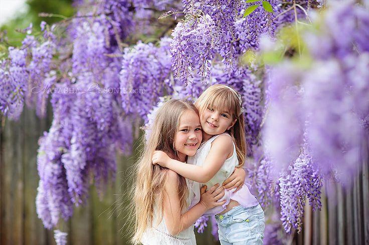 Children Photo portrait in blooming wisteria