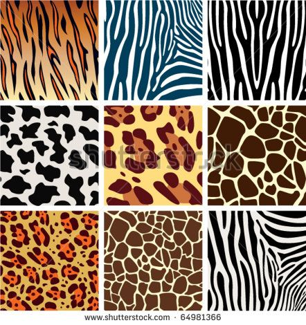 vector animal skin textures of tiger, zebra, giraffe, leopard and cow