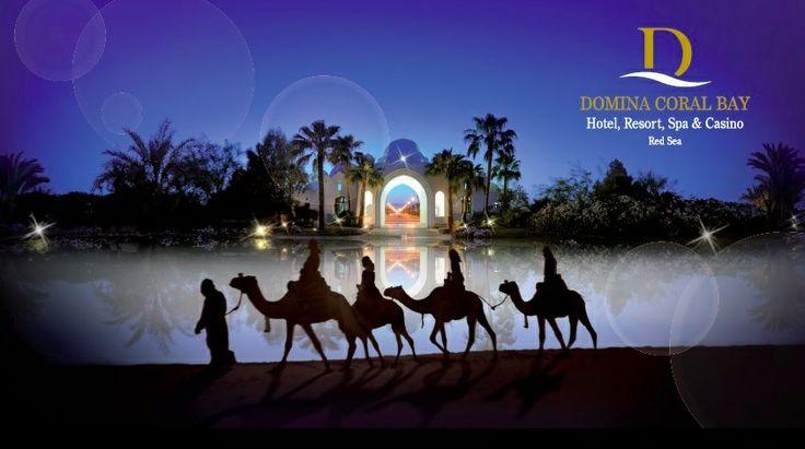 Situato in posizione privilegiata, nella zona più alta del resort, il Domina Harem, con le sue atmosfere orientali intessute di oro e seducenti colori, è un'oasi di benessere, dove ogni dettaglio è studiato per rendere il vostro soggiorno unico e indimenticabile e per farvi vivere la magia e la sensualità delle notti arabe.