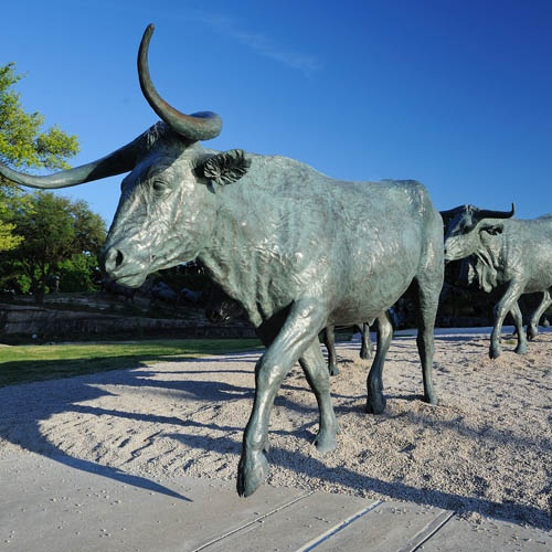 Pioneer Plaza, Dallas, TX. Located at the front of the Dallas Convention Center, Pioneer Plaza was conceived of by local real estate developer, Trammell Crow. The combination of landscaping and sculpture offers a glimpse into a cattle drive along the Shawnee Trail, which was a conduit for cattle on their way to market in Missouri, passing through Dallas near the current site of Pioneer Plaza and heading up what is now Preston Road as early as the 1840s until just after the Civil War.