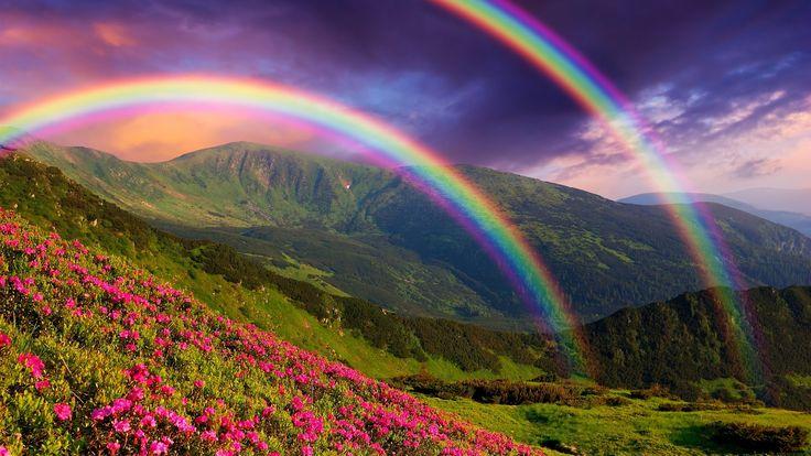 Natureza paisagem, montanhas, flores, arco-íris Papéis de Parede - 2560x1440 QHD