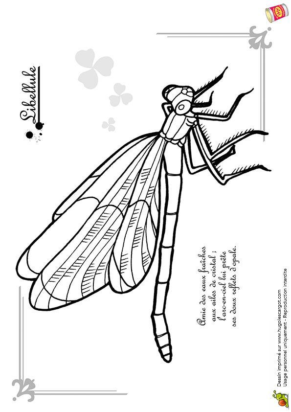 Coloriage petit insecte libellule - Coloriage hugolescargot ...