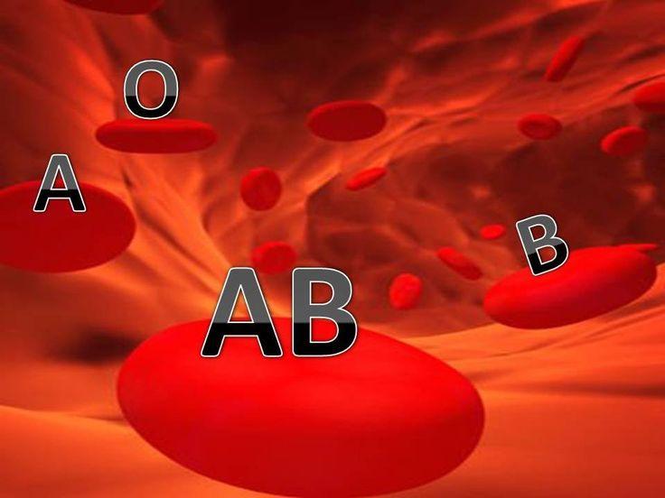Cette vidéo présente un cours sur le système ABO, présentant les différents groupes sanguins A, B, AB et O, ainsi les différents antigènes sur la surface des globules rouges et les anticorps dans le sérum.