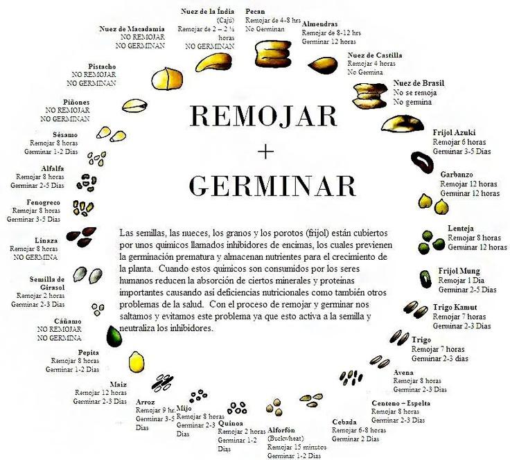 germinar+remojar