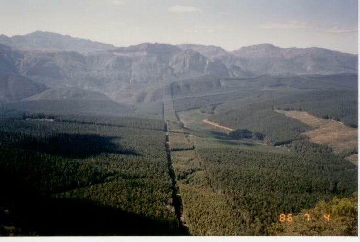 View across Forest Estates to Chimanimani Mountains, Zimbabwe