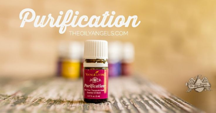 There are so many interesting uses for Purification essential oil, it was hard to narrow down to a top 10 list!  Have you ever heard of Purification ...