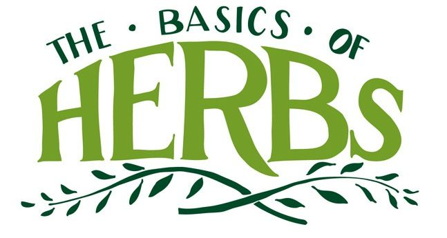 The Basics of Herbs by Illustrated Bites (featured on SeasonWithSpice.com): Herbs Illustrations, Herbs Huntssignaturerecip, Fresh Herbs, Herbs Gardens, Seasonwithspic Com, Cooking, Food You R, Basic Herbs, Spices And Herbs