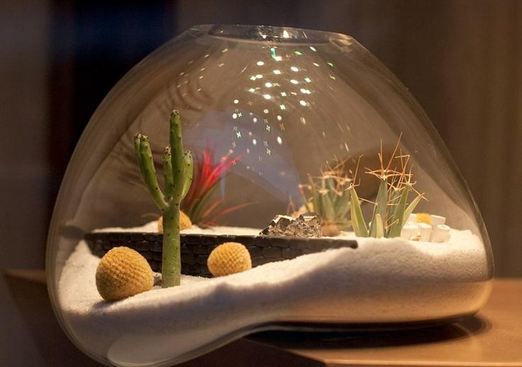 Cactus styled Terrarium #design